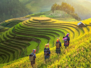 sapa-GettyImages-622497870